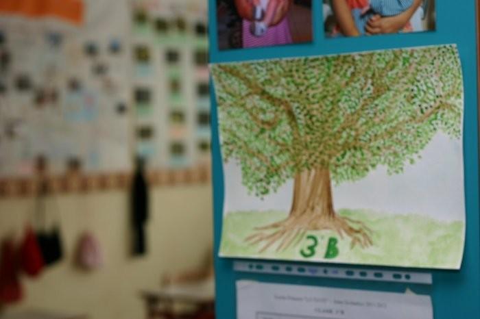 3aB scuola primaria